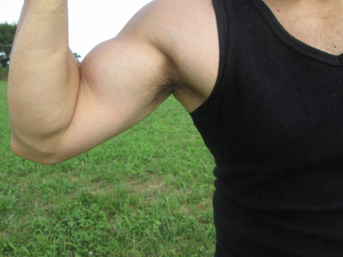 男性ホルモンのテストステロンを増やすと言われる食べ物